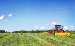 Tractor en el campo, rodeado por las cigüeñas Foto de archivo
