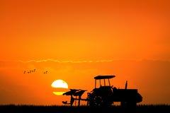 Tractor en los campos en la puesta del sol stock de ilustración