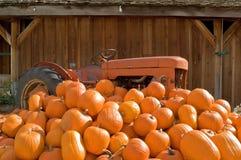 Tractor en pompoenen Stock Foto's