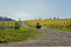 Tractor in English vineyard Royalty Free Stock Photo