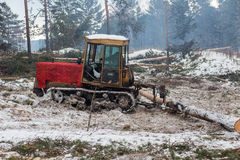 Tractor for export of timber logs Stock Image