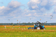 Tractor on a farmer field Stock Image