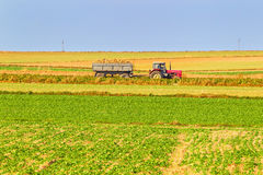 Tractor in a farmer field Royalty Free Stock Photos