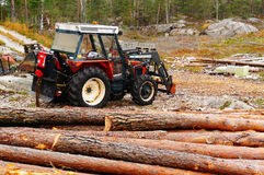 Tractor with felling trees Stock Photography