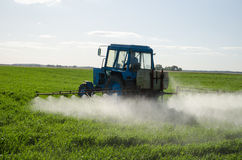 Tractor fertilize field pesticide and insecticide. Tractor spray fertilize field with insecticide herbicide chemicals in agriculture field and evening sunlight royalty free stock photo