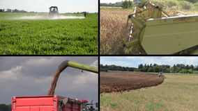 Tractor fertilize and plow field. Combine harvest wheat. Collage stock footage