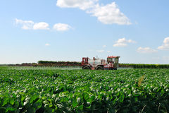 Tractor fertilizes crops Stock Photography