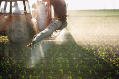 Tractor fertilizes crops Stock Image