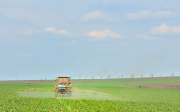 Tractor fertilizes crops in the field Stock Images
