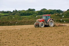 Tractor in the field. Red tractor in the field. Cornwall, England Royalty Free Stock Images