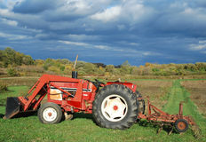 Tractor in a field. Red tractor in a field - harvest time royalty free stock image
