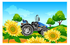Tractor on field. Agricultural machine, tractor in dark blue color, on field, vector an illustration Stock Photo