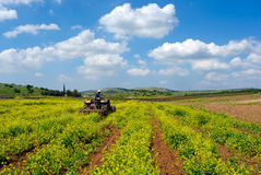 Tractor at field. Tractor working at the  field under cloudy sky Royalty Free Stock Photography