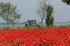 Tractor in a field. Aisne,Picardy region of France Stock Photo