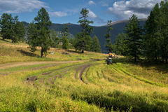 Tractor on the field in the Altai mountain, Russia Royalty Free Stock Photo