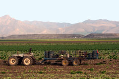 Tractor and field crops Royalty Free Stock Images