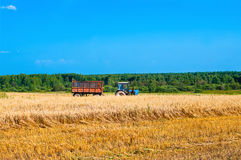 Tractor in field at harvest. On a Sunny day Royalty Free Stock Photo
