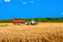 Tractor in field at harvest Royalty Free Stock Photos