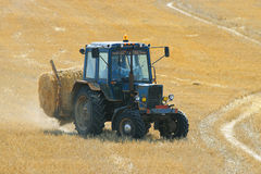 Tractor in a field of hay mows Royalty Free Stock Photo