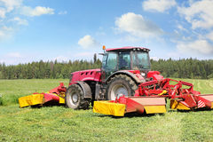 Tractor on the field. Tractor mowing of fodder grasses on the field Royalty Free Stock Image