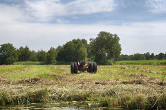 Tractor in a field near Dwarsgracht Stock Images