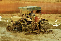 Tractor in field Stock Photos