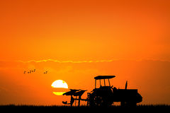 Tractor in the fields at sunset Stock Photography