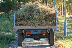 Tractor filled with weeds Stock Photos