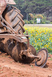 Tractor in flower garden Stock Images