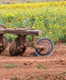 Tractor in flower garden Royalty Free Stock Image