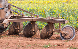 Tractor in flower garden Royalty Free Stock Photos