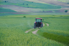 Tractor and green field Stock Image