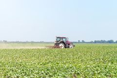 Tractor in the green field. Agriculture machine. Agriculture royalty free stock photography