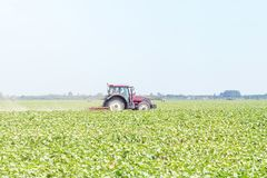 Tractor in the green field. Agriculture machine. Agriculture royalty free stock image