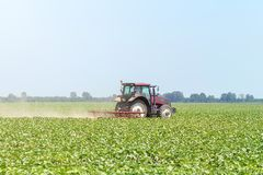 Tractor in the green field. Agriculture machine. Agriculture royalty free stock photos