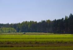 Tractor on green field, tilt shift Stock Image