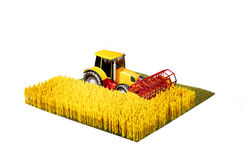 Tractor harvester harvesting wheat Royalty Free Stock Photo