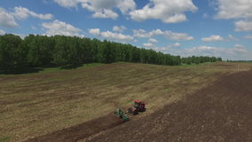 Tractor harvester on sowing. Late spring or early summer. Field. Green trees. stock footage