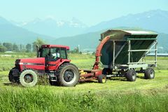 Tractor harvesting hay Royalty Free Stock Photos
