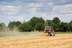 Tractor harvesting wheat field Stock Image