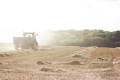 Tractor Harvesting Wheat Field in England Royalty Free Stock Photography