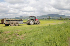 Tractor Hauls Manure Stock Photography
