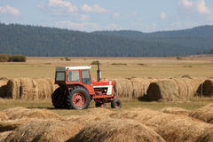 Tractor With Hay Bales. Red tractor in a field full of hay bales; clean, crisp, sharp image; not cropped from original Stock Photos
