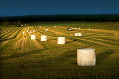 Tractor and hay bales Stock Photos