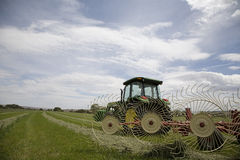 Tractor with hay rake. Tractor and hay rake in the hay field Stock Image