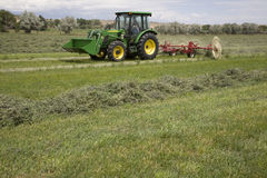 Tractor and hay rake. A tractor using the raking equipment to prepare the hay Stock Image