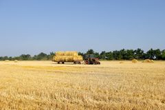 Tractor with hay. The tractor carrying hay. Bales of hay stacked in the cart royalty free stock photography