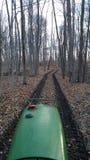 Tractor in het hout Stock Foto