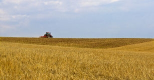 Tractor on Horizon. Tractor plowing the harvested field in summer stock image