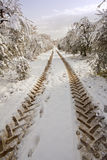 Tractor imprints on a country road in snow. Winter Royalty Free Stock Photography